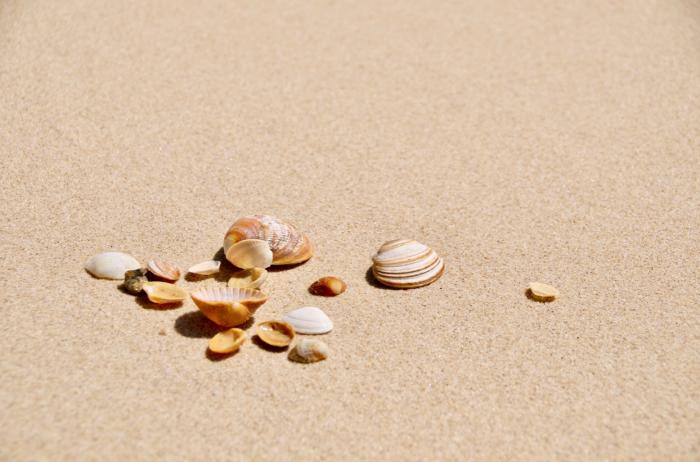 summertime real estate slowdown